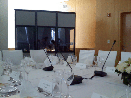 delegate microphones
